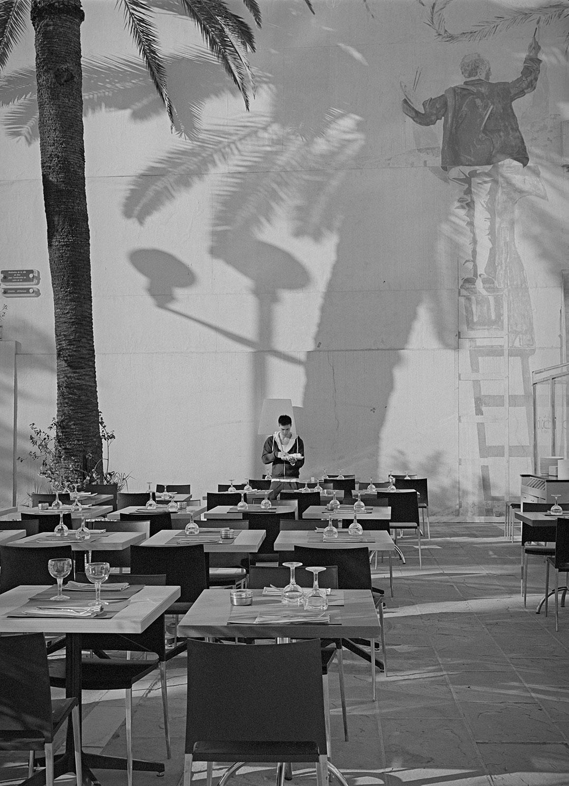 Swinging palm trees