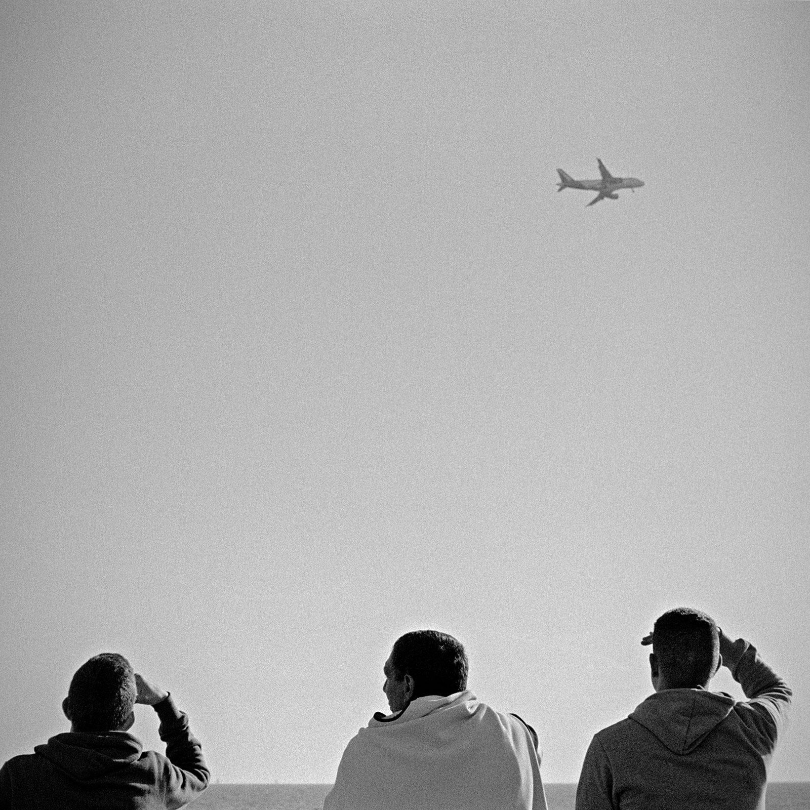 """Nice, from the series: """"Planes"""""""